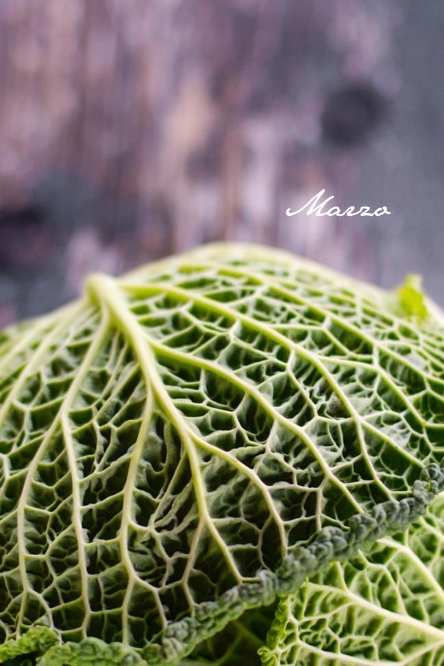 Verdure di marzo mygreenfood